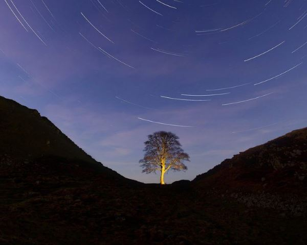 Discover Dark Skies in Northumberland